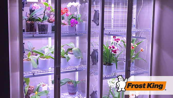Frost King Goes Green! How Our EPDM Weatherseal Can Help You Hack an IKEA Cabinet into the Greenhouse of Your Dreams Tip Image