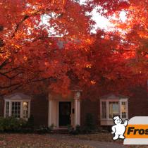 Fall Fix Ups Tip Image